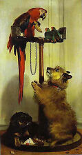 Art Print - Macaw Birds Terrier And Spaniel Puppies Of Queen V - Sir Edwin Henry