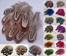 Pack of 10 Natural Pheasant / Dyed Guinea Fowl Feathers for Nail Art or Crafts