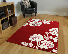 Warm Elegant Red Fireplace Rugs Affordable Soft Touch Floral Living Room Carpets