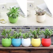 Colourful Mini Round Plastic Plant Flower Pot Home Office Decor Planter 7CM