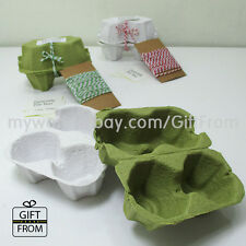 EGG CARTONS (2 egg capacity)_Paper egg tray_Easter egg wrapping_Egg box