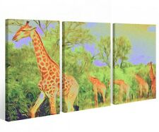 Canvas 3 pieces Pictures Giraffe Africa Animal Savannah Wall 9A519