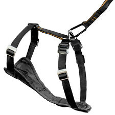 Kurgo Enhanced Tru-Fit Dog Harness - Padded Chest Plate For Comfortable Fit
