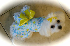 Small Sunflowers on Blue Dress - Dog dress clothes- Puppy Apparel