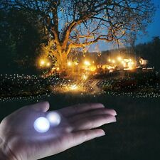 30 LED Fairy Berry Glowing Light Ball Floating Party Wedding Decoration Floral