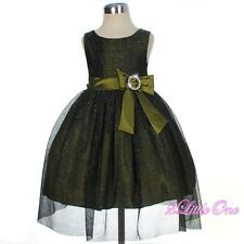 Shimmery Green Wedding Flower Girl Pageant Birthday Party Dress Size 9m-3T FG279