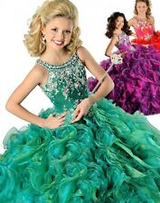 Charming Sweet 16 Beads Organza Ball Gown Quinceanera Dresses Pageant Party