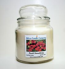 Soy Wax Candle 16 Oz. Richly Scented Mesa Candle Company - You Choose Fragrance