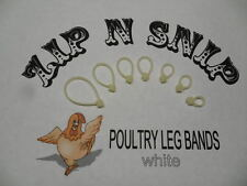White LEG BANDS (ONE) size fits (ALL) POULTRY Chicken Duck Turkey Pheasant Goose