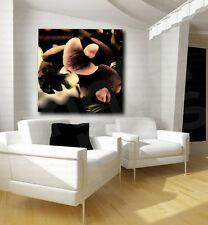 Abstract Orchid Flower Canvas Art Print Wall Decor