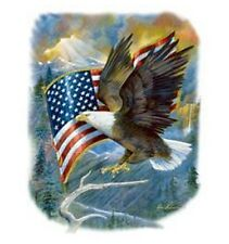 Bald Eagle & Flag Shirt, American Pride, Majestic, U.S.A., Patriotic T-Shirt