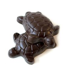 Turtle Chocolate Turtles