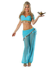 Womens Blue Belly Dancer Arabian Nights Jasmine Costume