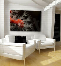 Orange Coral Giclee Art Canvas Fine Print Home Wall Decor