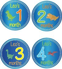 Personalised Monthly Baby Stickers, Milestone Stickers, Baby Shower Gift_B041