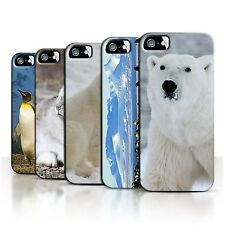 STUFF4 Back Case/Cover/Skin for Apple iPhone 5/5S/Arctic Animals