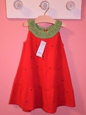 NWT Gymboree Bust of Spring Strawberry Sweater Dress 18-24, 5T CUTE! $34.95