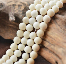 Wholesale White Coral Natural Gemstone Round Spacer Loose Beads 4,6,8,10mm