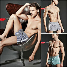 2017 Men's Sexy Stripe Cotton Arrow pants Trunk shorts Boxer briefs Underwear