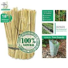 "45cm (18"") Natural Bamboo Stakes 
