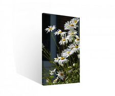 Canvas 1 Pcs Flower Chamomile Picture Art print Wall stretched 9B821