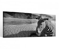 Canvas 1 Pieces Zebra Black White Animal Desert Africa Pictures Stretched 9c107
