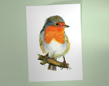 Robin Red Breast Art Print, British Garden Bird, of watercolour pencil drawing