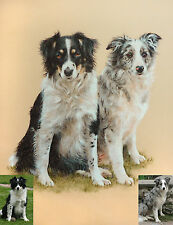 PET PORTRAIT Commission a pastel painting / drawing from photo - dog, cat, horse