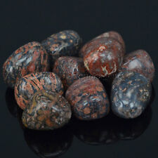 Polished Freefrom Tumbled Natural Leopardite Jasper Stone Crystal Healing Wicca