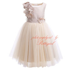 Flower Girl Kids Tutu Dress Princess Pageant Party Wedding Bridesmaid Tulle Gown