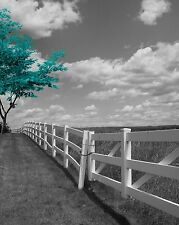 Black White Teal Tree Landscape Wall Art Home Decor Matted Picture