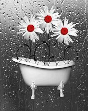 Red Bathroom Daisy Flowers Wall Art Home Decor Matted Artwork Picture
