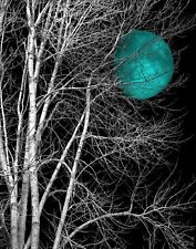 Tree Moon Wall Art, Moon Decor, Bedroom Teal Wall Decor, Photography Artwork