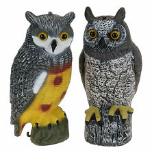 Large Owl Bird Scarer Cat & Pigeon Deterent Seed Protection from Seagulls& Birds