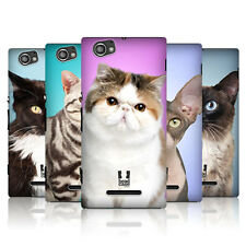 HEAD CASE DESIGNS CAT BREEDS HARD BACK CASE COVER FOR SONY XPERIA M C1905 C1904