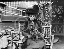 1904 FRENCH BULLDOG BULL DOG IN PARIS PHOTO Largest Sizes