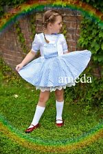 Gorgeous Girls Wizard of OZ Dorothy Birthday Party Dress Blue Lace Costume 2-7Y