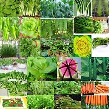 VEGETABLE GARDEN SEEDS NON GMO / HYBRID ORGANIC SURVIVAL PLANT BANK LOT