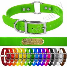 """Hunting Dog Name Collar Strap 1"""" Ring in Center & D Ring w/ Free Brass ID Plate"""