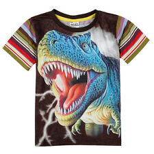 Boys Short Sleeve Colourful Dinosaur Fashion Summer T-shirt (2-8 Years)