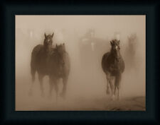 Ghost Horses by Gary Crandall Galloping Mist Framed Art Print Wall Décor Picture