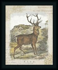 Woodland Stag I Deer Lodge Décor Framed Art Print Artwork Picture Wall Decor
