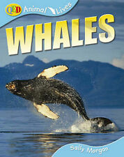 Animal Lives: Whales: QED Animal Lives Sally Morgan Very Good Book