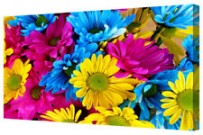Bold Vivid Flower Petals LARGE Blue/Yellow/Pink Garden Floral Box Canvas Print