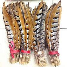 beautiful 10-100pcs Scarce natural pheasant feather 30-35cm/12-14inch