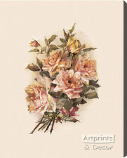 Blush Roses (:Stretched Canvas Print of Vintage Art:)