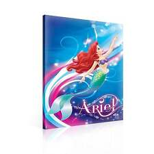 Disney Little Mermaid Ariel CANVAS PRINT ART PICTURE (PPD365DK)