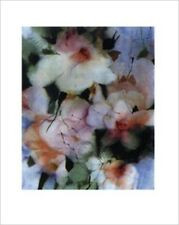 In The Mist II by Young Renee 20x16 Art Print Poster Floral Painting