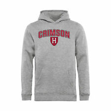Harvard Crimson Youth Ash Proud Mascot Pullover Hoodie