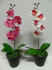 40cm Artificial Pink or White Orchid Flower In A Pot - Artificial Potted Plants